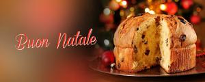 Festeggiando il Natale - Panettonata @ Sede Edelweiss